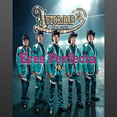 Play & Download Eres Perfecta by La Autoridad De La Sierra | Napster