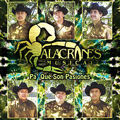 Play & Download Pa' Que Son Pasiones by Alacranes Musical | Napster