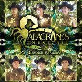 Pa' Que Son Pasiones by Alacranes Musical