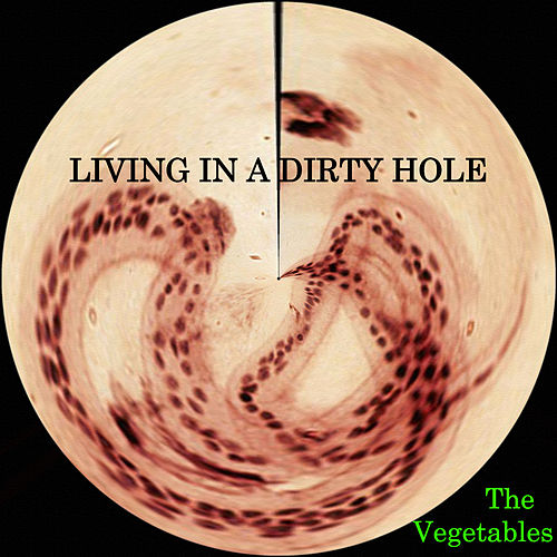 Living in a Dirty Hole by The Vegetables