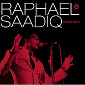 The Way I See It by Raphael Saadiq
