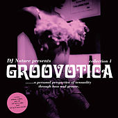 Play & Download Groovotica Collection 1 by DJ Nature | Napster