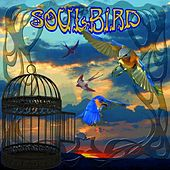 SoulBird by Peter Green
