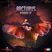 Kiskadee Ep by Arcturus