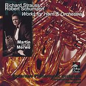 Play & Download Works for Horn & Orchestra by Martin Van De Merwe | Napster