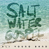 Play & Download Saltwater Gospel by Eli Young Band | Napster