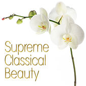 Play & Download Supreme Classical Beauty by Various Artists | Napster