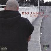 Play & Download La Mata Del Pajon by Big James | Napster