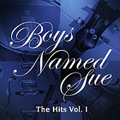 Play & Download The Hits Vol 1 by Boys Named Sue | Napster