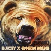 Rawk! by DJ Icey
