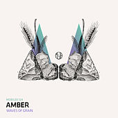 Play & Download Waves of Grain Remix by Amber | Napster