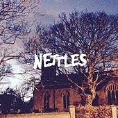 Play & Download What Did You Do? by The Nettles | Napster