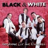 Play & Download Herzdame für die Ewigkeit by Black & White | Napster