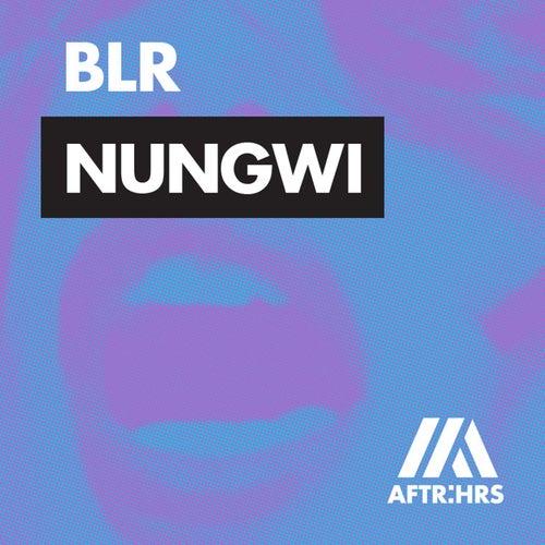 Nungwi von Blr