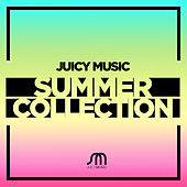 Robbie Rivera Presents Juicy Music Summer Collection - EP by Various Artists