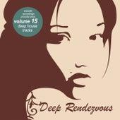 Deep Rendevouz, Vol. 15 by Various Artists
