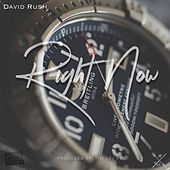 Right Now by David Rush