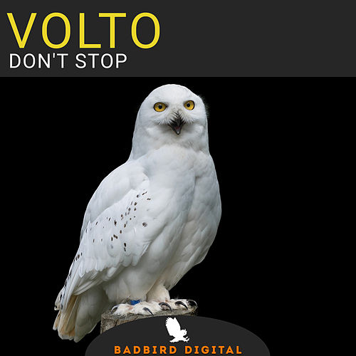Don't Stop EP by Volto