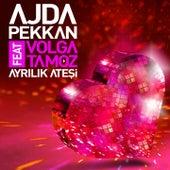 Play & Download Ayrılık Ateşi by Ajda Pekkan | Napster