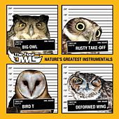 Play & Download Nature's Greatest Instrumentals by The Four Owls | Napster
