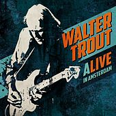 Play & Download ALIVE in Amsterdam (Live) by Walter Trout | Napster