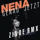 Play & Download Genau jetzt - Remixe by Nena | Napster