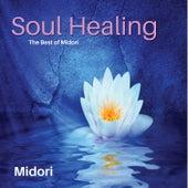 Soul Healer by Midori