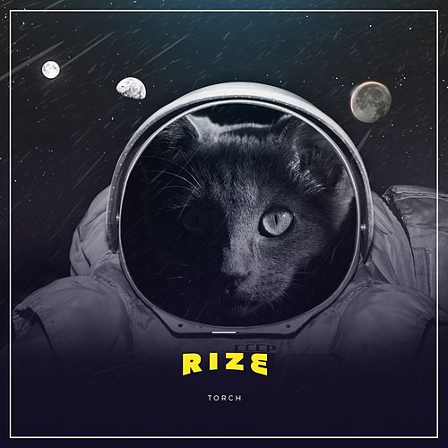 Play & Download Rize by Torch | Napster