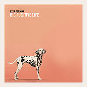 Play & Download Big Fugitive Life by Ezra Furman | Napster