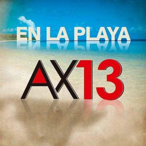 En la Playa de Ax-13
