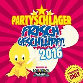 Play & Download Partyschlager - frisch geschlüpft! 2016 by Various Artists | Napster