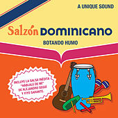 Salzon Dominicano by Various Artists