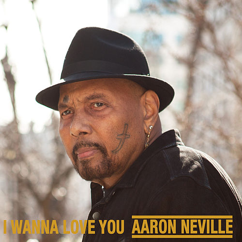 I Wanna Love You by Aaron Neville