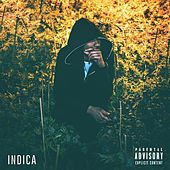 Indica by Willy J Peso