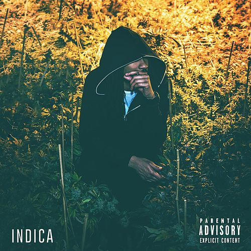 Play & Download Indica by Willy J Peso | Napster