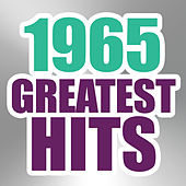 Play & Download 1965 Greatest Hits by The Magic Time Travelers | Napster