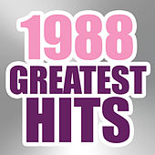 Play & Download 1988 Greatest Hits by The Magic Time Travelers | Napster
