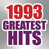 1993 Greatest Hits by The Magic Time Travelers