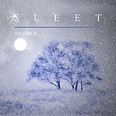 Sleet, Vol. 2 by Various Artists
