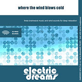 Play & Download Where the Wind Blows Cold by Electric Dreams  | Napster