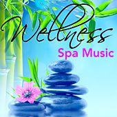 Play & Download Wellness Spa Music - Jazz Chill Out Sounds to Relaxation, Massage & Yoga Meditation, Soothing Smooth Music for Chillax by Spa Music Collective | Napster