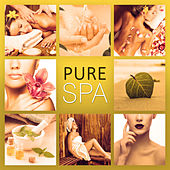 Pure Spa – Nature Sounds, Calm Down, Deep Re;axation, Spa Music, Peaceful Music by S.P.A