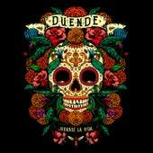Play & Download Jugarse la Vida by Duende | Napster