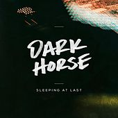 Dark Horse de Sleeping At Last