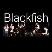 Play & Download Blackfish by Blackfish | Napster
