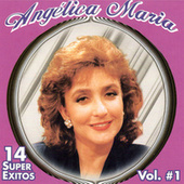 14 Super Exitos, Vol. 1 von Angelica Maria
