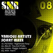 Scary Maze by Various Artists