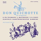 Don Quixote in Hamburg by Various Artists