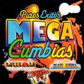 Puros Exitos Mega Cumbias by Various Artists