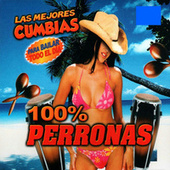 Play & Download 100% Perronas by Various Artists | Napster
